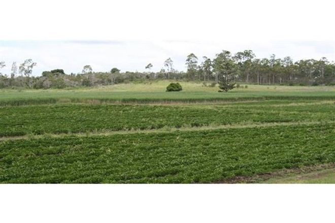 Picture of Ellerays Road, MCILWRAITH QLD 4671