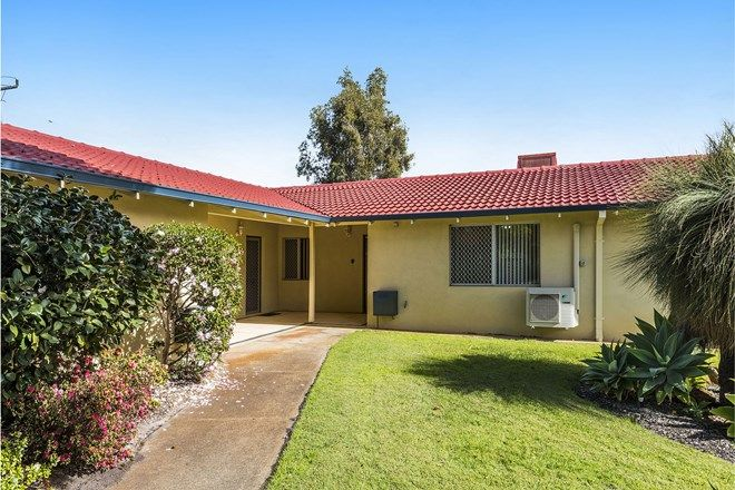 Picture of 10/10 Houtmans Street, SHELLEY WA 6148