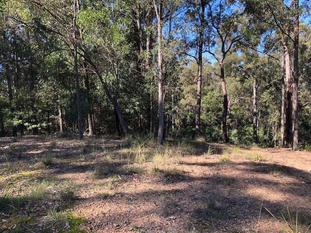 Lot 10 Rilys Road, Bermagui NSW 2546, Image 0