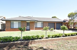 Picture of 7 Castlereagh Ave, Dubbo NSW 2830