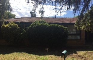Picture of 2 Newell Ave, Gunnedah NSW 2380