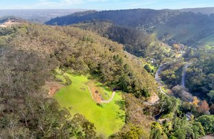 Picture of 412 Old Norton Summit Road (adj Norton Summit), Horsnell Gully SA 5141
