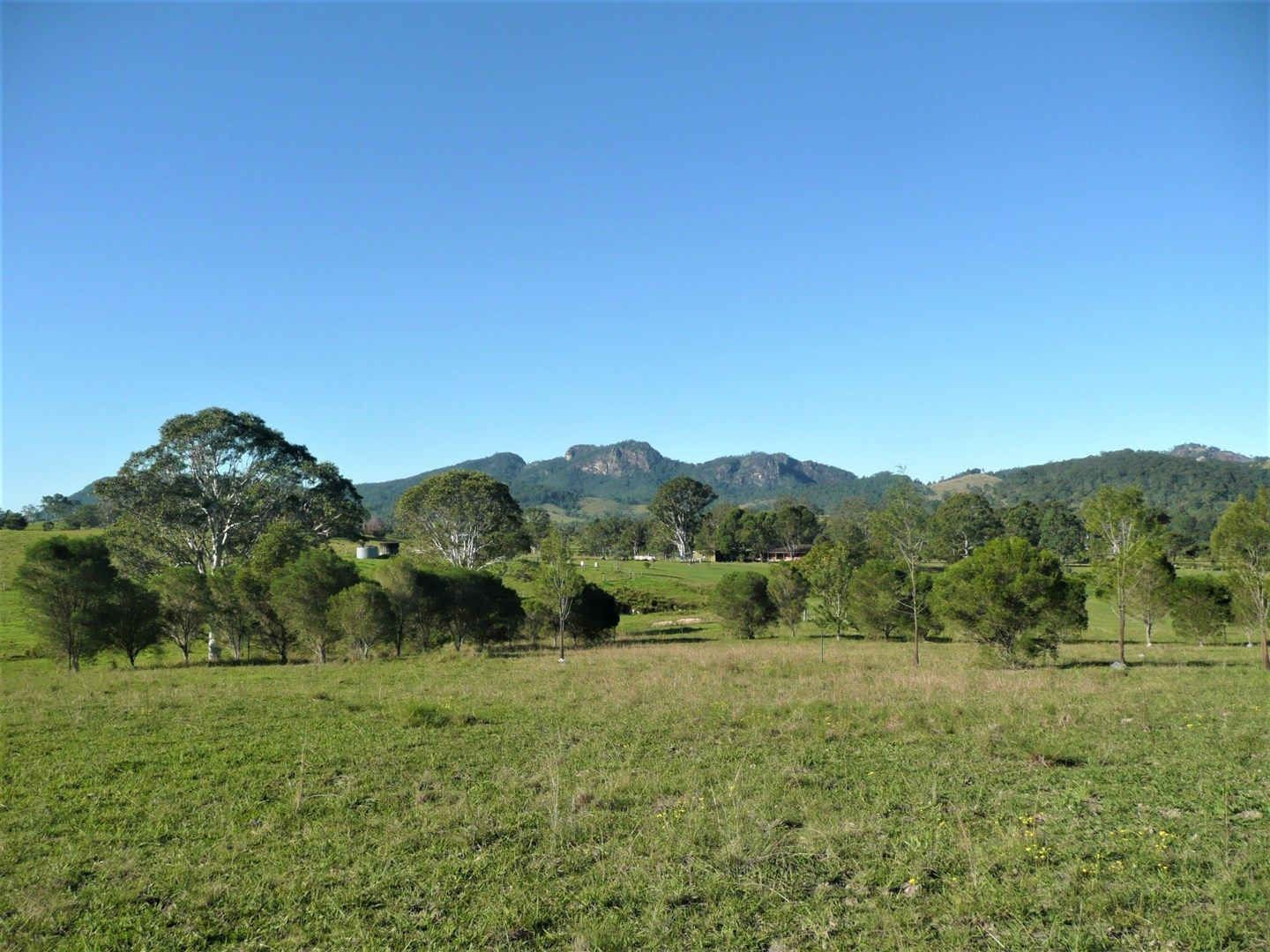 758 Barrington West Rd, Barrington NSW 2422, Image 0