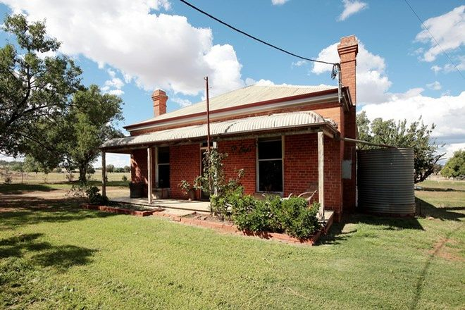 Picture of 1554 Olympic Highway, BRUCEDALE NSW 2650