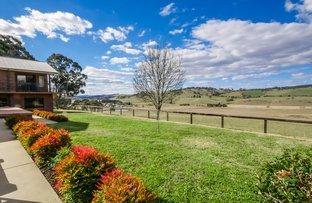 Picture of 55 Summer Hill Lane, Orange NSW 2800
