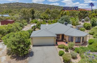 Picture of 19 Bruns Drive, Darling Downs WA 6122