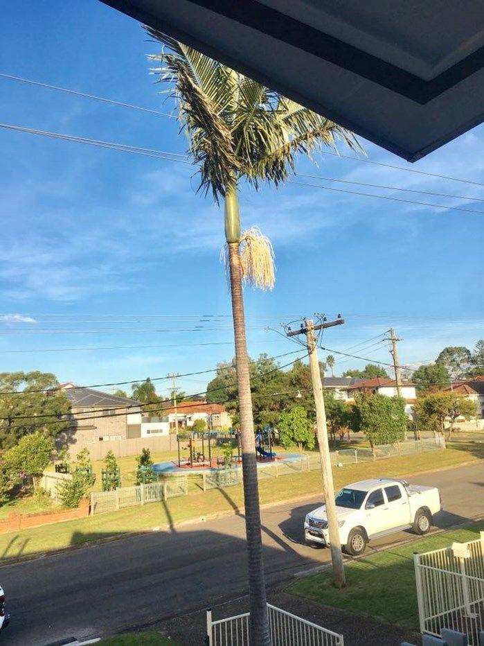 84 Harris Street, Merrylands NSW 2160, Image 2