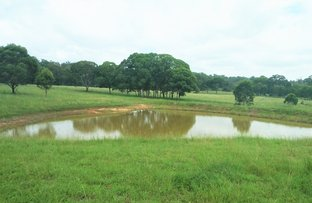 Picture of Robinson Road, Geham QLD 4352