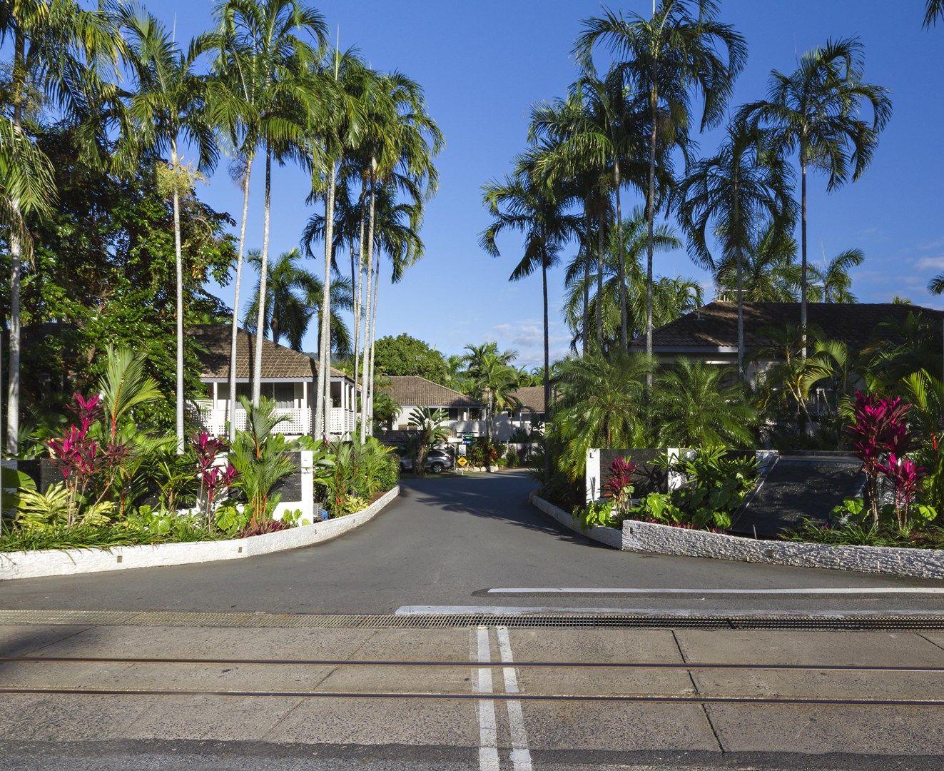 143/121 Port Douglas Road, Port Douglas QLD 4877, Image 1
