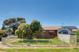 Picture of 14 Danvers Grove, Woodville Gardens SA 5012