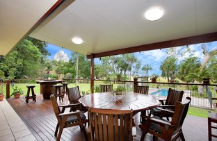 Picture of 373 Cape Hillsborough Road, Ball Bay QLD 4741