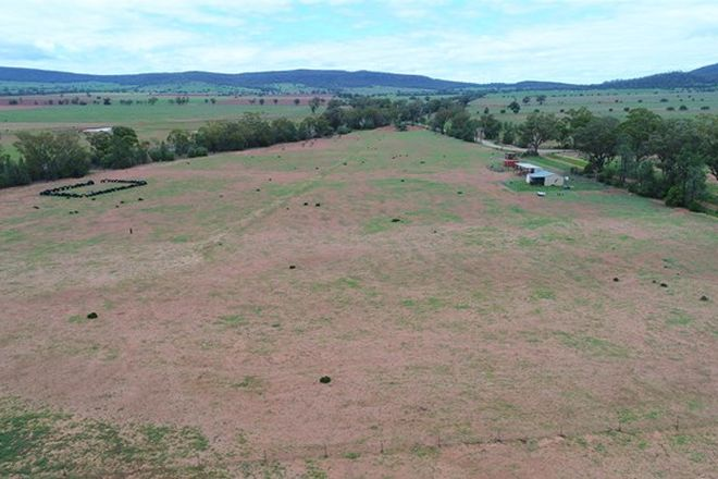 Picture of 164 Voca Rd, CURLEWIS NSW 2381