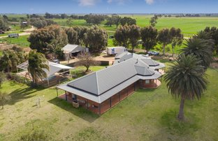 Picture of 614 Nullubooma Rd, Wakool NSW 2710