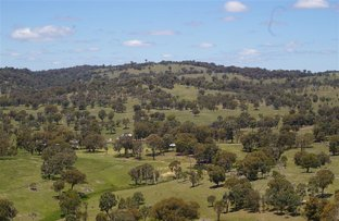 Picture of Armidale NSW 2350