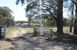 Picture of 240 Balgonie Lane, Stratford VIC 3862