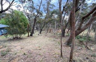 Picture of 36 Godson Ave, Blackheath NSW 2785