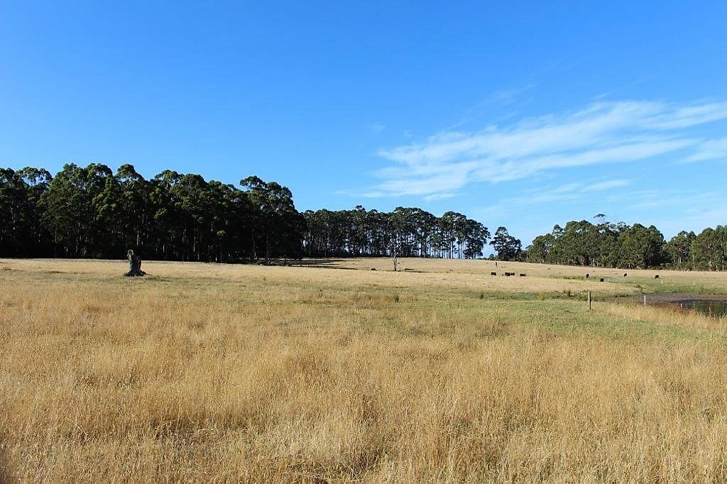 706 Valley of the Giants Road, Denmark WA 6333, Image 1