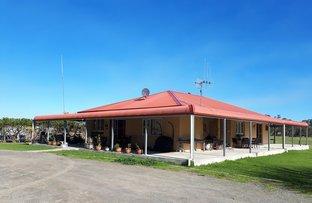 Picture of 2006 Settlement Road, Napier WA 6330