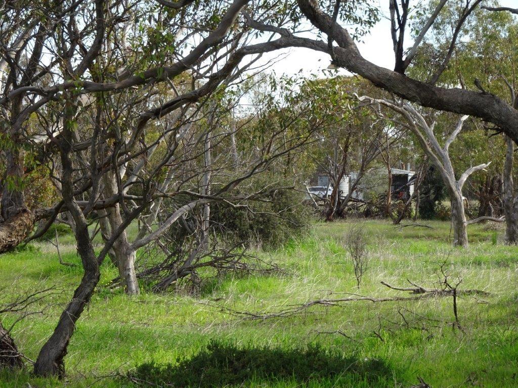 Lot 5980 Brookton Kweda Road, Aldersyde WA 6306, Image 1
