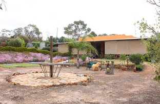Picture of 228 Bayly Road, York WA 6302