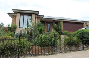 16 Wellington Street, Mernda VIC 3754