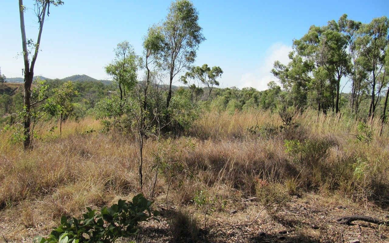 Lot 95 Booroo Rd, O'Connell QLD 4680, Image 1