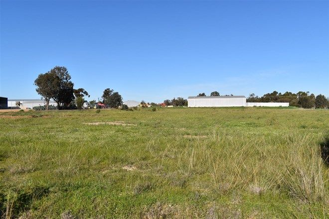 Picture of 6 Martins Crescent, KATANNING WA 6317