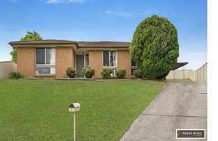 Picture of 5 Willett Place, Ambarvale NSW 2560