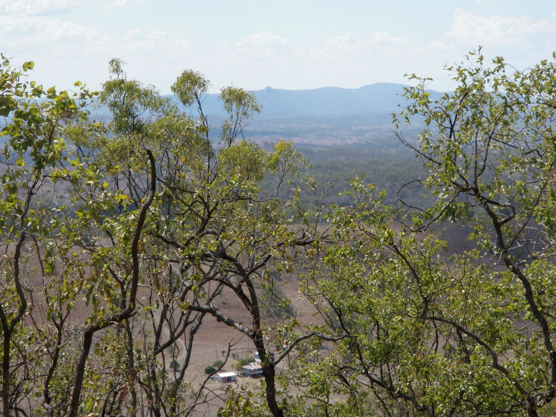 299 Gooyan Road, New Moonta QLD 4671, Image 0