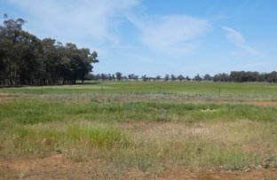 Picture of 710 Muttons Lane, Coolamon NSW 2701