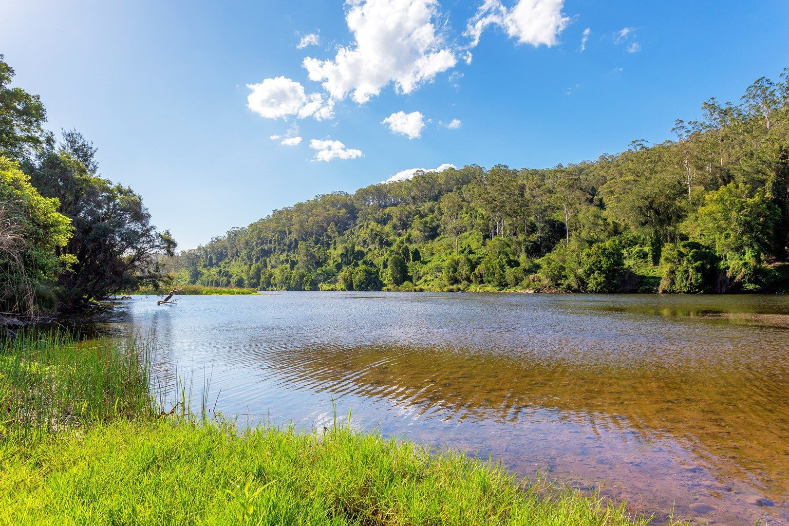 564 Kimbriki Road, Wingham NSW 2429, Image 2