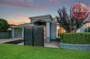 Picture of 2 Robe Street, Andrews Farm SA 5114