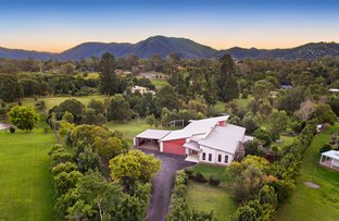 Picture of 5 Teatree Close, Samford Valley QLD 4520