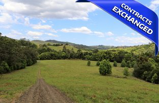 Picture of 120 Wallace Road, Terania Creek NSW 2480
