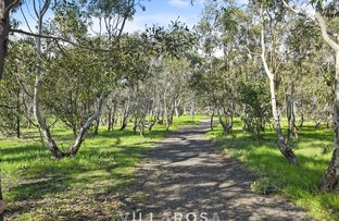 Picture of 17 Yellowbox Ave, Armstrong Creek VIC 3217