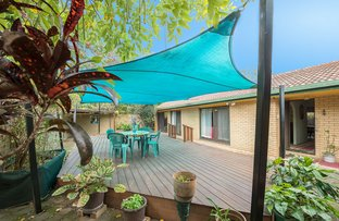 Picture of 82 Japonica Drive, Palm Beach QLD 4221