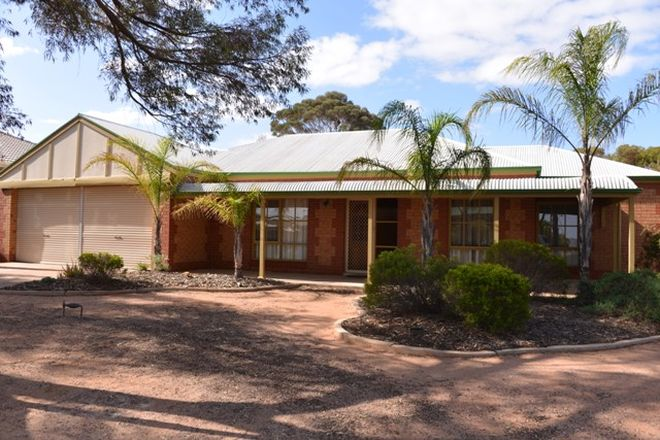 Picture of 14 Harcus Place, PORT AUGUSTA WEST SA 5700