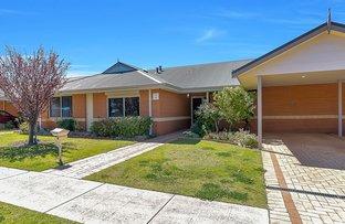 Picture of Villa 2/55 Alexander Drive, Menora WA 6050