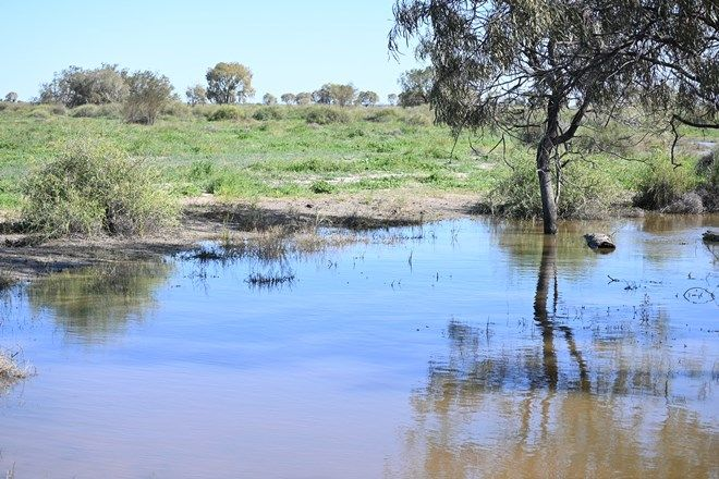 Picture of 'Bennetts' Off Sandy Camp Road, QUAMBONE NSW 2831