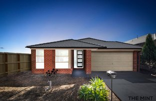Picture of 12 Dunraven Crescent, Doreen VIC 3754