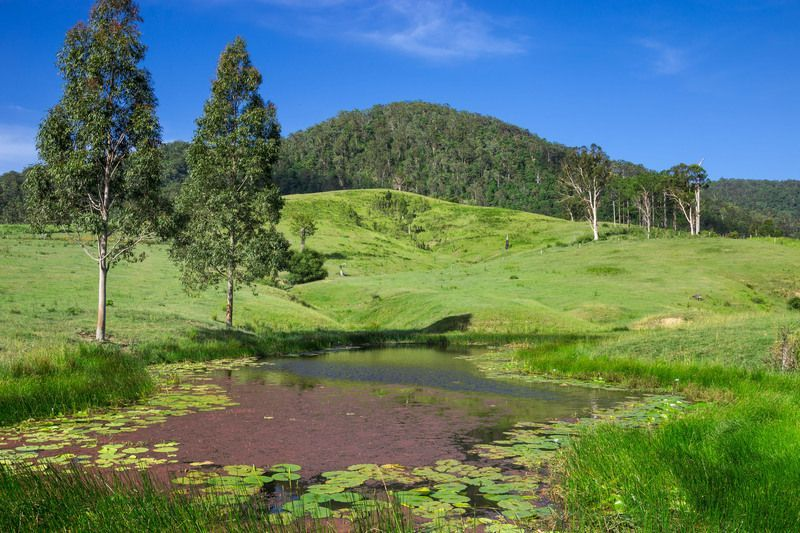 460 Eastern Mary River Road, Conondale QLD 4552, Image 1