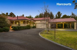 Picture of 9 Tea Tree Place, Somerville VIC 3912