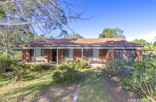 Picture of 13 Albert  Street, South Kempsey NSW 2440