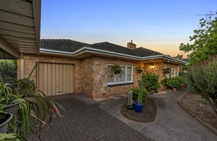 Picture of 62 Angas Road, Westbourne Park SA 5041