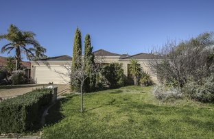 Picture of 15 TIPUANA MEWS, Ellenbrook WA 6069