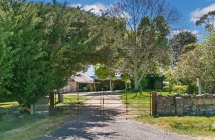 Picture of Birthday Farm, 130 Vaughan Springs Road, Drummond North VIC 3446