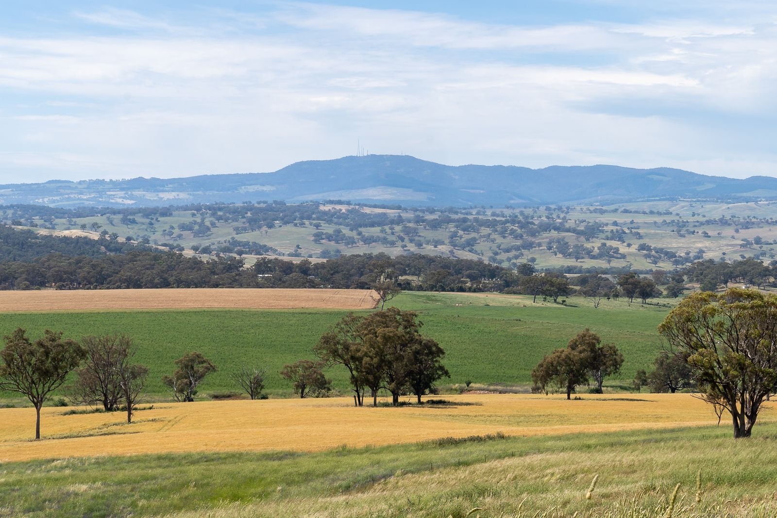 606 Peabody Road, Orange NSW 2800, Image 0