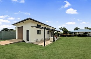 Picture of 17 Tracey Street, Balgal Beach QLD 4816