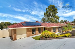 Picture of 11 Cooinda Avenue, Redwood Park SA 5097