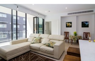 Picture of 206/15-17 Birdwood  Avenue, Lane Cove NSW 2066